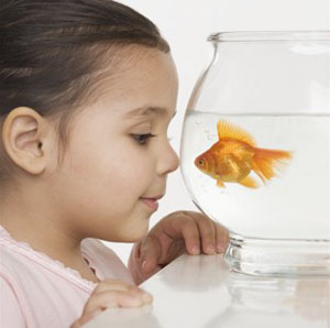 Photo: girl with goldfish.